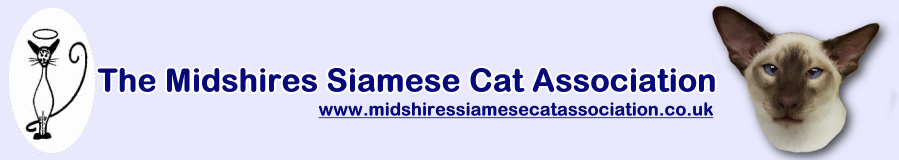 Midshires Siamese Cat Association